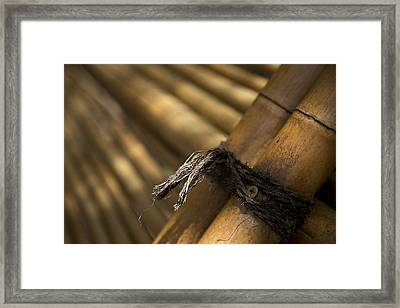 Tied Together Framed Print