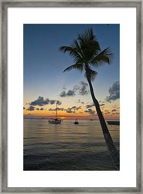 Tied Up At Sunset Framed Print