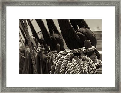 Tied Up Black And White Sepia Framed Print