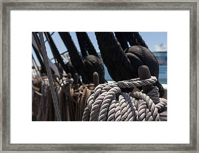 Tied Up Framed Print by Scott Campbell