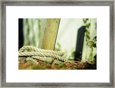Ties Framed Print by Rebecca Sherman