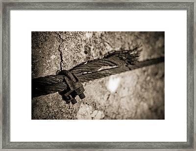 Ties That Bind Framed Print by Amber Kresge