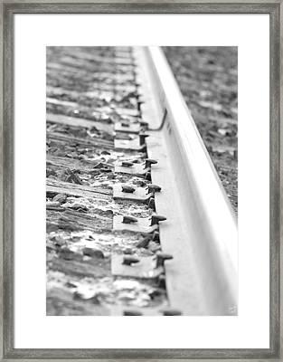 Ties That Bind Us Framed Print by Lisa Knechtel