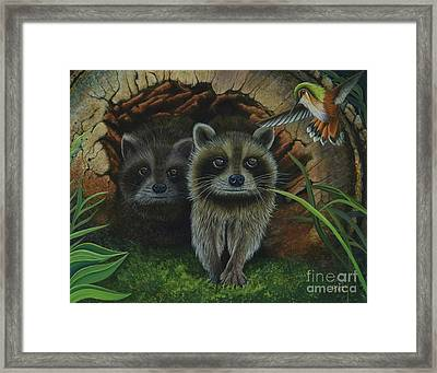 Tiffany And Raccoons Framed Print