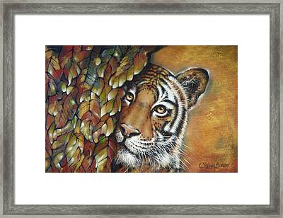 Tiger 300711 Framed Print