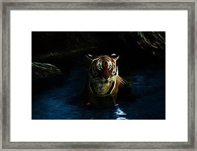 Tiger 3860 - F Framed Print