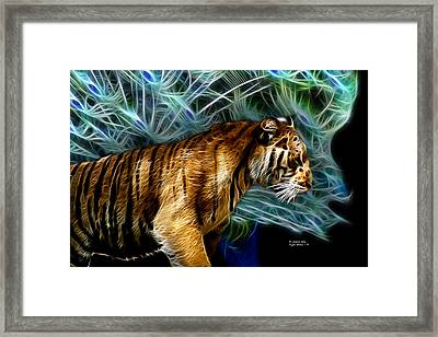 Tiger 3921 - F Framed Print by James Ahn