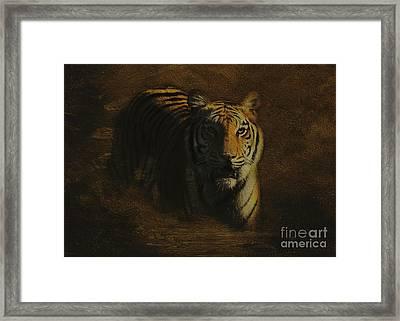 Tiger Art Framed Print by Jayne Carney