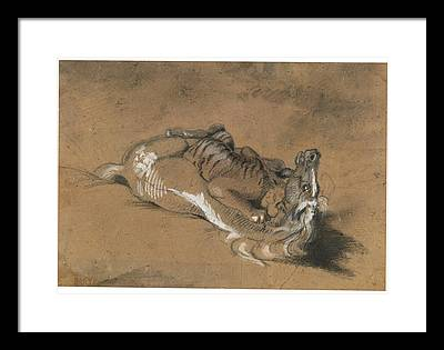 Tiger Attacks A Horse Framed Prints