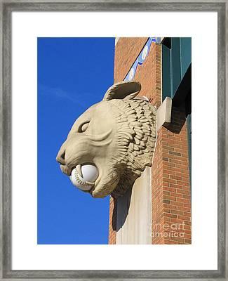 Tiger Baseball Framed Print by Ann Horn