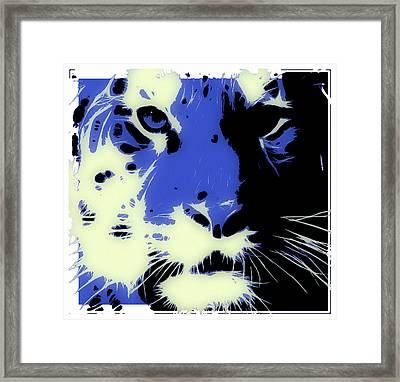 Tiger Blue Framed Print