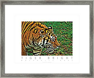 Framed Print featuring the photograph Tiger Bright  Naturally Rare Poster by David Davies