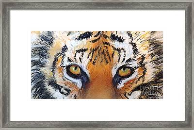 Tiger Close Up Framed Print