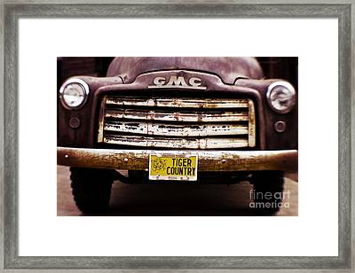 Tiger Country - Purple And Old Framed Print