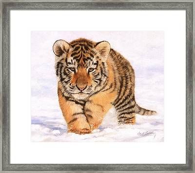 Tiger Cub In Snow Painting Framed Print by David Stribbling