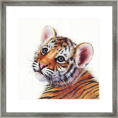 Tiger Cub Watercolor Painting Framed Print by Olga Shvartsur
