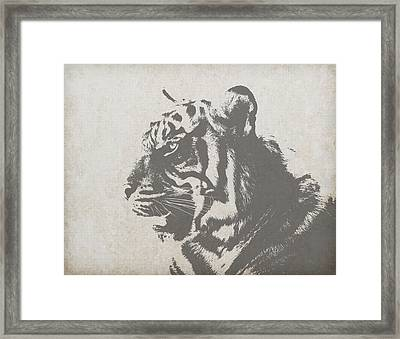 Tiger Drawing Framed Print by FL collection
