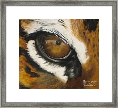 Tiger Eye Framed Print by Ann Marie Chaffin