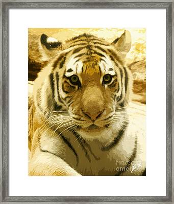 Framed Print featuring the digital art Tiger Eyes by Erika Weber