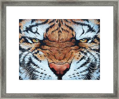 Tiger Eyes Framed Print