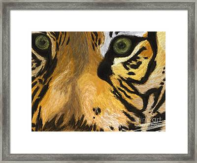 Tiger Eyes Framed Print by Methune Hively