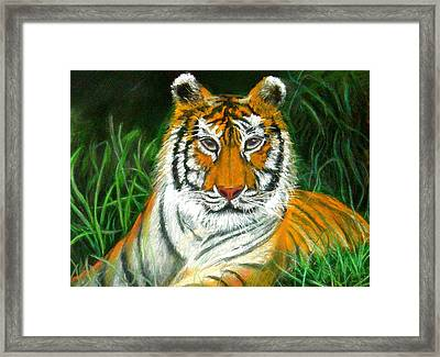 Framed Print featuring the pastel Tiger Eyes - Pastel by Antonia Citrino