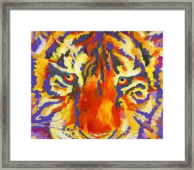 Tiger Eyes Framed Print by Stephen Anderson