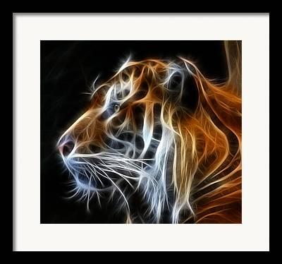 Tiger Fractal Framed Prints