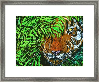 Tiger In Bamboo  Framed Print by Kay Shaffer