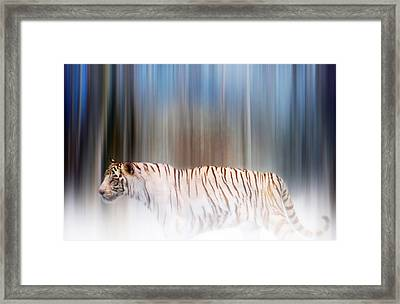 Framed Print featuring the photograph Tiger In The Mist by Valerie Anne Kelly