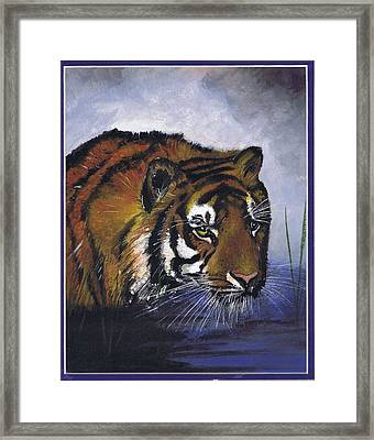 Tiger In The Water Framed Print
