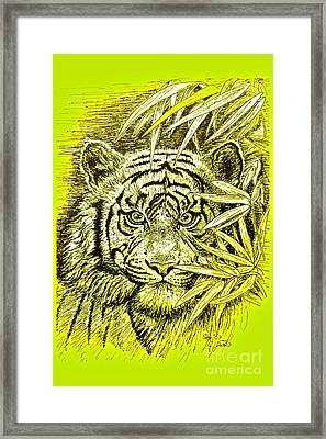 Tiger - King Of The Jungle Framed Print by Gitta Glaeser