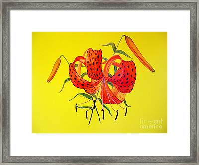 Tiger Lily Bouquet Framed Print by Joey Nash