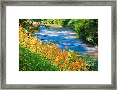 Tiger Lily Creek Framed Print