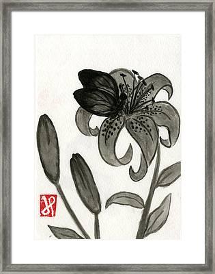 Tiger Lily Nap Framed Print