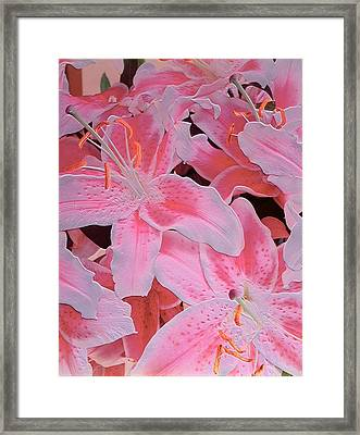 Tiger Lily Relief Framed Print by Norman Hollands