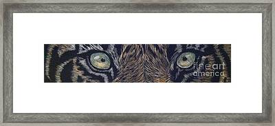 Tiger Momma's Always Watching Framed Print