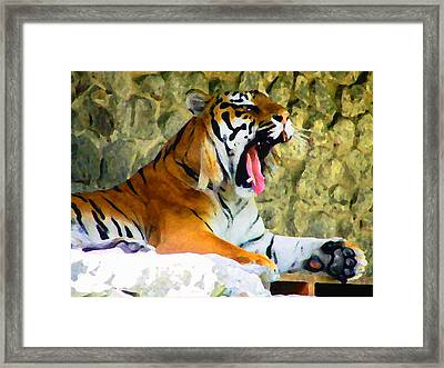 Tiger Framed Print by Oleg Zavarzin