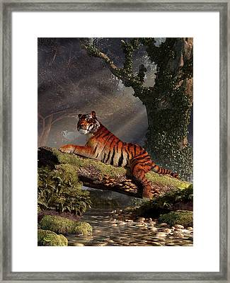 Tiger On A Log Framed Print by Daniel Eskridge