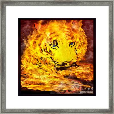 Tiger On Fire Framed Print by Gary Keesler
