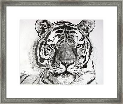 Tiger On Piece Of Paper Framed Print by Kevin F Heuman