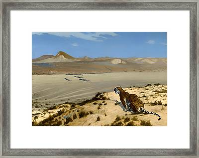 Tiger On Watch Framed Print