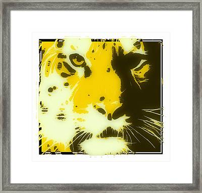 tiger Oranage Framed Print