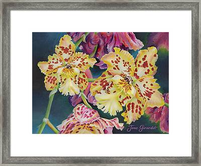 Framed Print featuring the painting Tiger Orchid by Jane Girardot