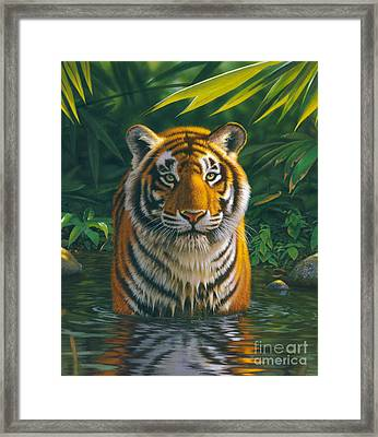 Tiger Pool Framed Print