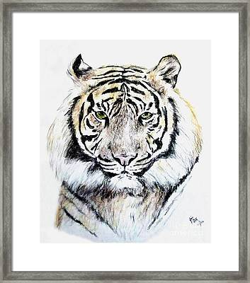 Tiger Portrait Framed Print by Jim Fitzpatrick