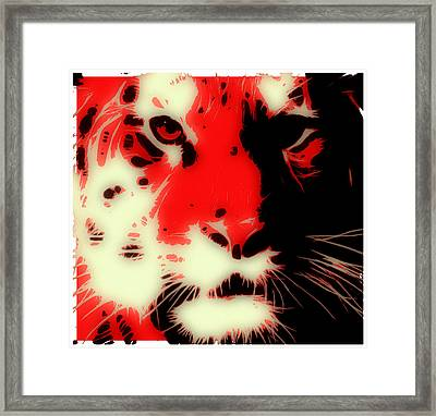 Tiger Red Framed Print