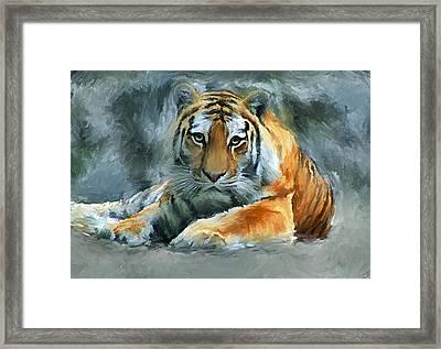 Tiger Snow Framed Print