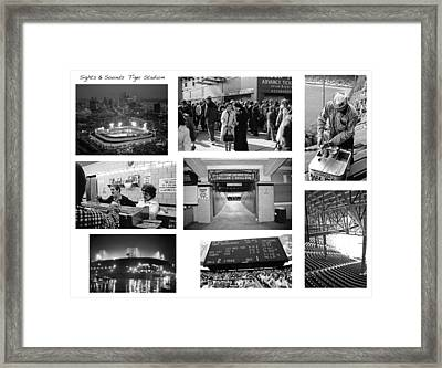 Tiger Stadium Sights And Sounds Framed Print by John Farr