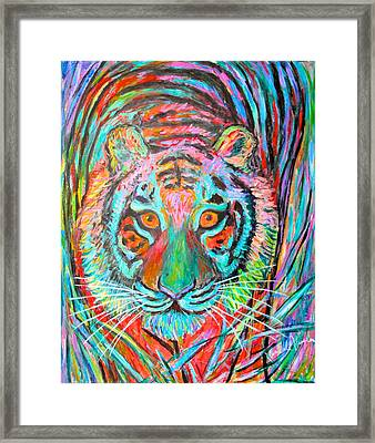 Tiger Stare Framed Print